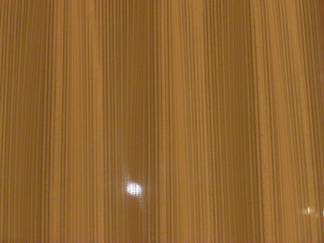 Cimg8217